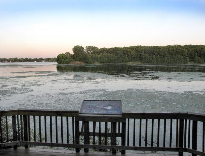 This is a view of the Detroit River and Humbug Island from a wildlife observation deck in Humbug Marsh Unit of the Detroit River International Wildlife Refuge in Gibraltar. (Photo courtesy of Detroit River International Wildlife Refuge)